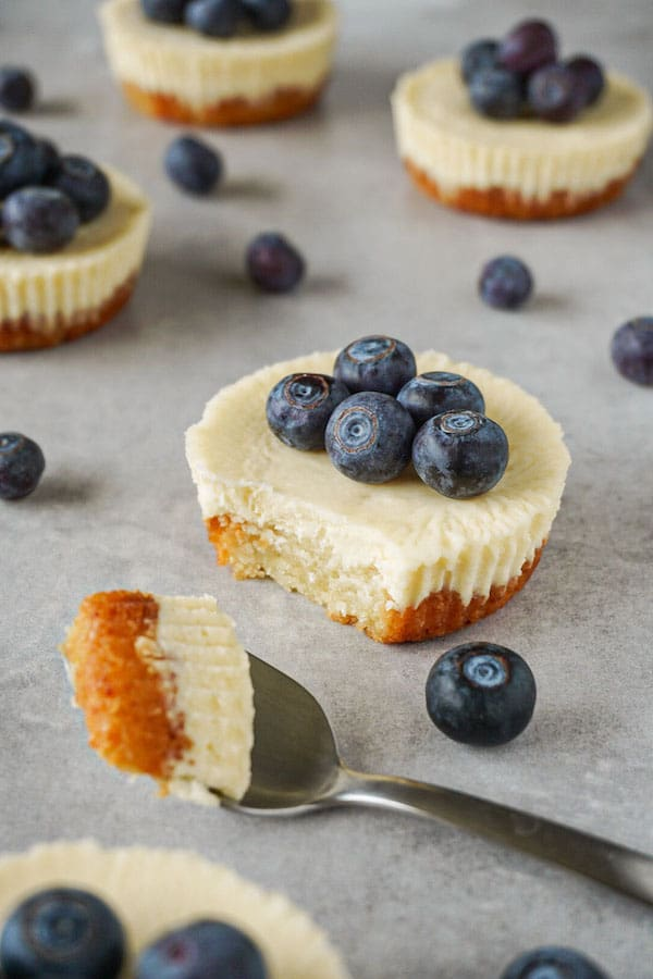 Mini cheesecake dessert toped with fresh blueberries on a grey working surface, one piece taken with a silver spoon.